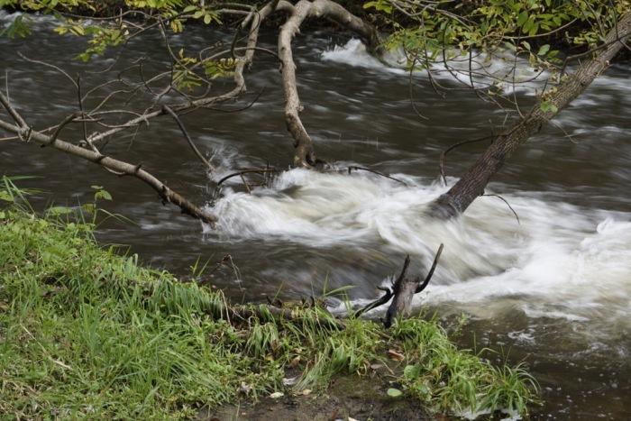 Tag 8 – Minneapolis: Rendezvous, Natur undStadt