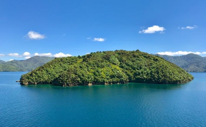 Tag 16 – Von Wellington nach Picton: DieSüdinsel
