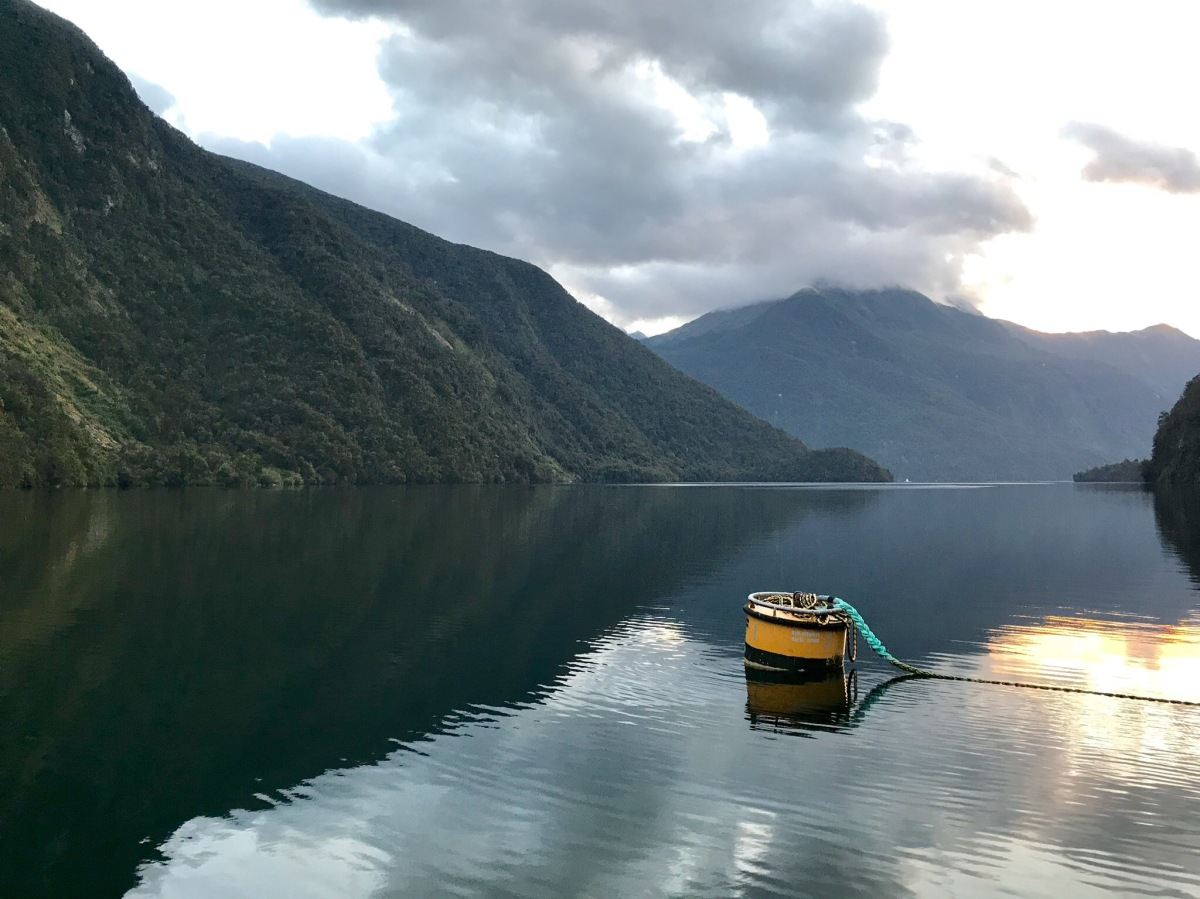 Tag 25 - Te Anau/ Doubtful Sound