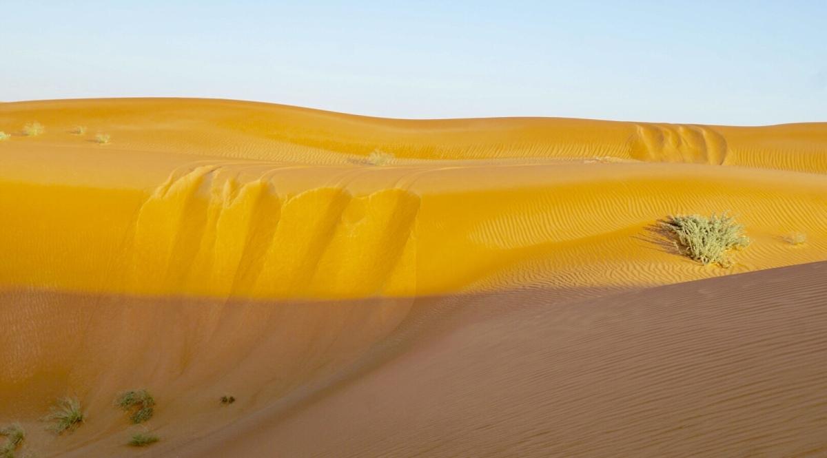 Tag 4: Rub Al-Khali - In die Wüste geschickt