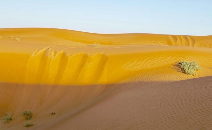 Tag 4: Rub Al-Khali – In die Wüstegeschickt