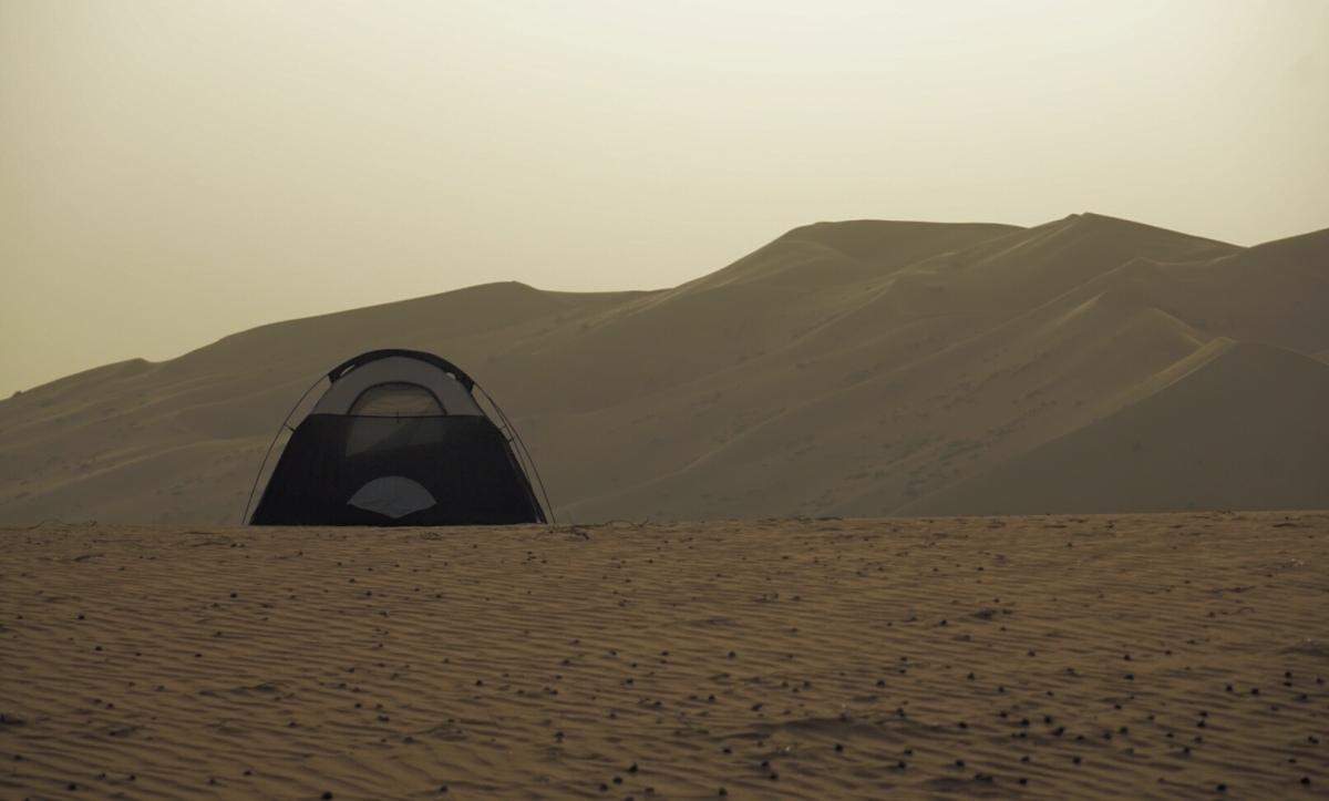 Tag 9: Rub Al-Khali - aufs Kamel gekommen