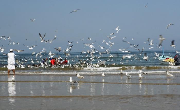 Tag 15: Muscat – BeachLife