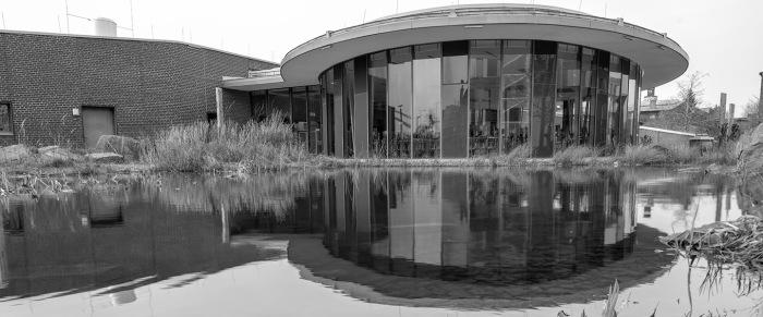Dessau – 100 JahreBauhaus