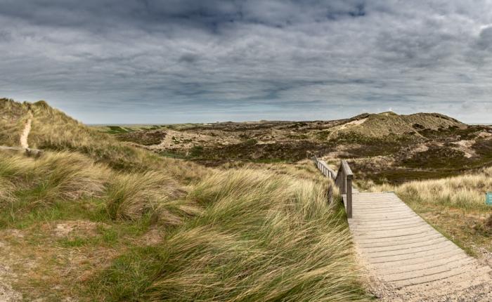 Sylt, wo der Wind immerbrüllt