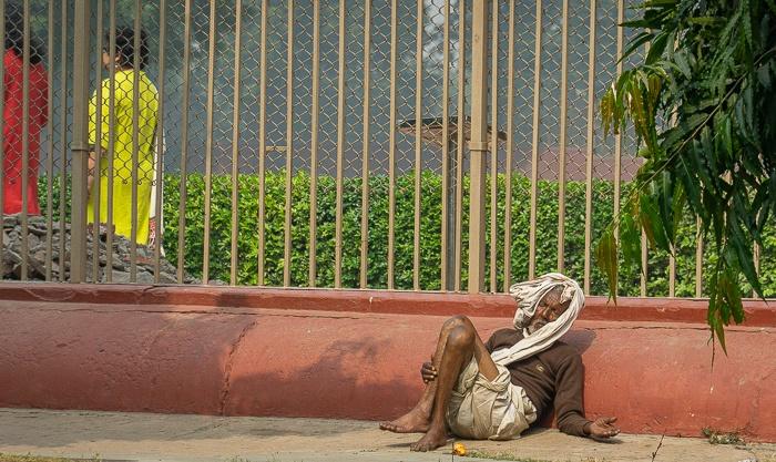 Tag 13: Varanasi – Buddha bei dieFische