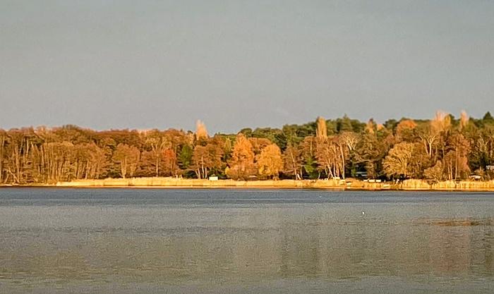 Wednesday Walks: 4 – Vier Seen und einKönigswald